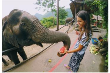 KANCHANABURI ELEPHANTS WORLD – O SŁONIACH W TAJLANDII